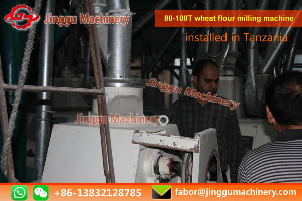 Iranian customers come to our company to discuss the complete set of 80-100t wheat equipment