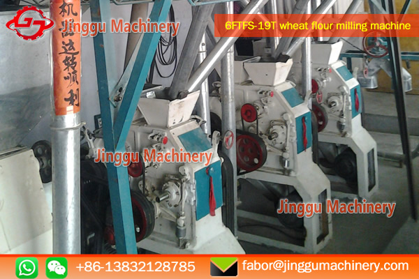 19T wheat flour milling machine with price | small scale wheat flour milling machine